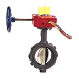 Затвор WD3510 Butterfly Valve 100мм фото